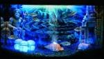 Hydor H2O Show Box - набор Хайдор Атлантида