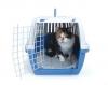 Savic Trotter 2 - Переноска Савик Троттер 2 для кошек (3261)