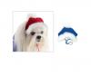 Pet Fashion - шапка Пет Фешн Аляска для собак