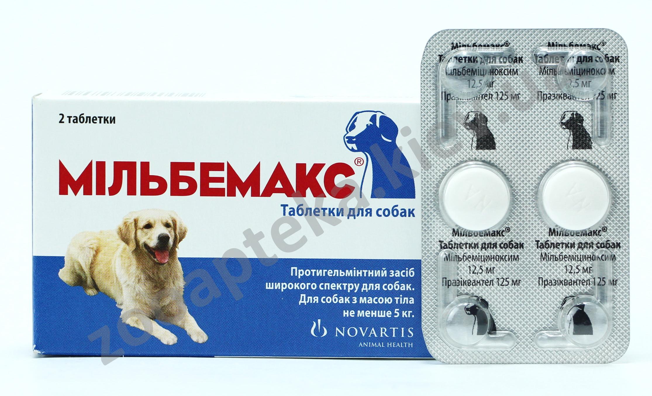 лекарства от паразитов bactefort